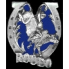 BULLRIDER RODEO CAST PIN