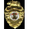 LOS ANGELES, CA CO SHERIFF MEDICAL BADGE LASD DX