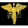 REGISTERED NURSE PIN RN CADEUSES PIN GOLD