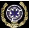 EMT EMERGENCY MEDICAL TECH LAUREL PIN