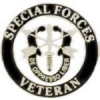 US ARMY SPECIAL FORCES VETERAN PIN