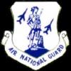AIR NATIONAL GUARD PIN