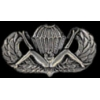 US ARMY AIRBORNE PARATROOPER BUSH WINGS X-RATED PIN
