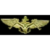 USMC MARINE CORPS USN NAVY PILOT BUSH WINGS X-RATED PIN