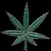 MARIJUANA LEAF PIN