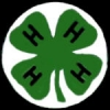 4H CLUB LARGE LOGO PIN