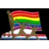 GAY RIGHTS FLAG PIN