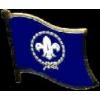 BOY SCOUTS FLAG PIN DX