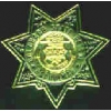 COLORADO STATE PATROL PIN MINI BADGE PIN