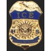DEPARTMENT OF HOMELAND SECURITY ICE AIR MARSHALL REPLICA MINI PIN