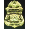 FBI FEDERAL BUREAU OF INVESTIGATION PIN MINI BADGE PIN