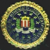 FBI FEDERAL BUREAU OF INVESTIGATION LOGO PIN