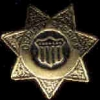 DEPUTY SHERIFF BADGE GOLD GENERIC W CREST PIN