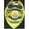 BLYTHE POLICE DEPT MINI BADGE PIN