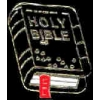 HOLY BIBLE PIN