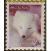 ARTIC FOX STAMP PIN