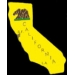 CALIFORNIA PIN STATE SHAPE PIN