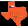 TEXAS PIN STATE SHAPE PIN
