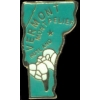 VERMONT PIN STATE SHAPE PIN