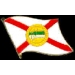 FLORIDA PIN STATE FLAG PIN