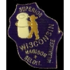 WISCONSIN PIN STATE SHAPE PIN