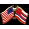HAWAII PIN STATE FLAG USA FRIENDSHIP FLAGS PIN