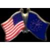 INDIANA PIN STATE FLAG USA FRIENDSHIP FLAGS PIN