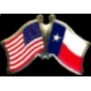 TEXAS PIN STATE FLAG USA FRIENDSHIP FLAGS PIN