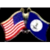 VIRGINIA PIN STATE FLAG USA FRIENDSHIP FLAGS PIN