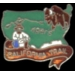 CALIFORNIA TRAIL HISTORICAL PIN