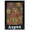 CITY OF ASPEN, CO LEAVES OF AUTUMN CITY PIN