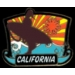 CALIFORNIA SURFER PIN