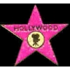 HOLLYWOOD WALK OF FAME STAR PIN