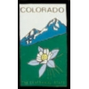 COLORADO WITH COLUMBINE PIN