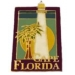 CAPE FLORIDA LIGHTHOUSE, FLORIDA FL PIN HAT, LAPEL PIN