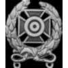 EXPERT SHARPSHOOTER BADGE US MILITARY PIN DX