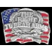 THE RIGHT TO BEAR ARMS PIN USA FLAG CAST PIN